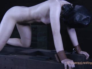pale charming chick anal exploited