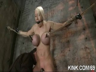 Breasty marvelous hot gal receives punished screwed in bondage