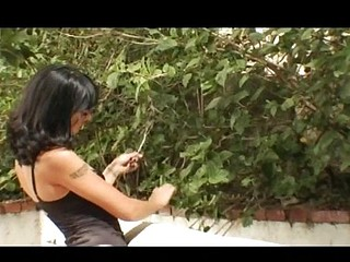 Dark-haired skinny babe with small pointer sisters gets fucked in the ass outdoors