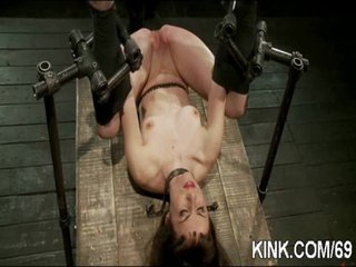 Busty sexy sexy playgirl made into obedient slave